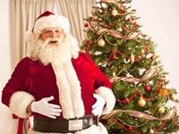כריסמס סנטה קלאוס חג המולד סילבסטר עץ אשוח  / צלם: thinkstock